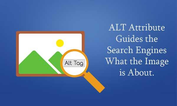 alt-tag-importance