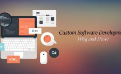Custom Software Development – Why and How?