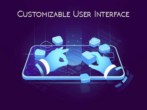 Customizable User Interface